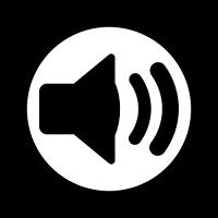 Аудио-репортаж